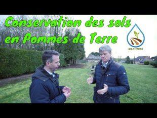 Conservation des sols en pommes de terre
