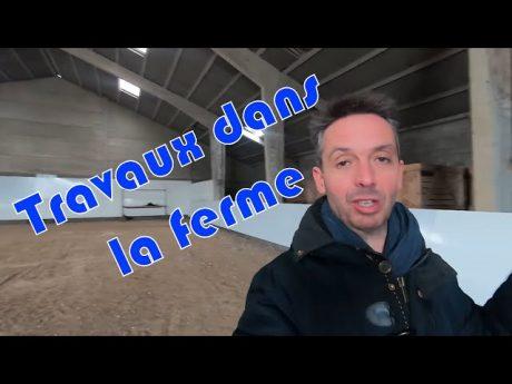 Aménagement du hangar en manège pour chevaux